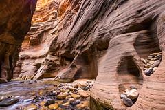 Rock Pocket (supra455) Tags: cold hike narrows national park pocket rock ut utah water zion springdale unitedstates us