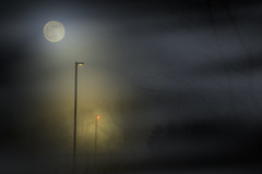 5D3_5883 (Saad M.N.B.) Tags: fog foggynight moon sky mist horror scary scarynight clouds canon canon5dmarkiii