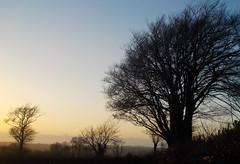 llanarth (christopherjohn.adams) Tags: ceredigion wales