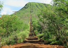 koko-crater-hike (quirkytravelguy) Tags: koko crater hike oahu hawaii