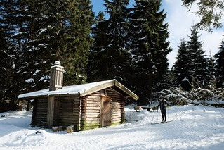 NATIONALPARK HARZ - LONESOME LOG CABIN