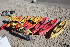 IMG_7569 (mudsharkalex) Tags: california pacificgrove pacificgroveca loverspointpark loverspointbeach beach