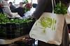 CitySeed_WinterMarket_01132018lr-017 (cityseednh) Tags: cityseed tote lettuce produce learosemarystudios