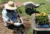 SAUDE Jardin Hospital 03 01 18 Foto Celso Peixoto (16) (prefbc) Tags: jardinagem hospital ruth cardoso saúde