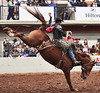 WacoRodeoDec2017 54 (cdw21) Tags: competition rodeo waco texas cowboy skill horse event