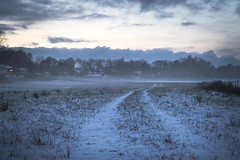 By the field (A blond-Tess) Tags: dailychallenge 365days 365photochallenge 365challenge canonphotography 7d sigma1750mmf28 outdoorphotography winter winterlight swedishwinter tractortracks snow field bluetone