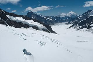 * The Aletsch Glacier
