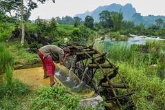 Ranní očista (zcesty) Tags: řeka vodníkolo vietnam20 umývání skála hory vietnam dosvěta caobằng vn
