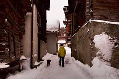 One man and his dog (ColmDub) Tags: grimentz snow alps valais switzerland snowfall mountains alpine plough dog man