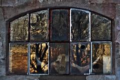 Insideout (Stefano Rugolo) Tags: stefanorugolo pentax k5 pentaxk5 insideout skull window brick wall reflection sunset abstract sweden hälsingland sverige vivitar80200mmf4macrofocusingzoommc horns texture tones light