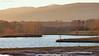 Sunset near a lake (A. Meli) Tags: lake sunset january 2018 január tél winter januar water sun nap naplemente táj tájkép landschaftsbild landscape wasser víz tópart