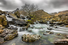 Lone Tree On The River (Adrian Evans Photography) Tags: 2018 snowdonia nikon winter idwal mist idwalstream riverside snow ogwenvalley glyderfach lonetree tree uk northwales sky glyderau worldheritagesite llandygai cwmidwal landscape snowdonianationalpark landmark mountains outdoor llynidwal clouds storm longexposure waterfall wales rapids stream river adrianevans smooth rocks nationalpark february ogwen glyderfawr snowcapped glyderaumountains treesdiestandingup d850 20mm ndfilter