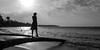 balance (rey perezoso) Tags: 2016 blackandwhite beach backlight contraluz sand sun palmtree elportillo playa samana quisqueya hispaniola mar caribbean caribe republicadominicana