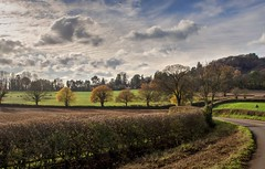 Countryside at Killerton