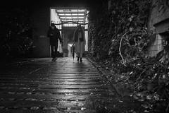 Berlin 2017 (caceiro) Tags: berlin berlim germany deustchland streetphotography street bw blackandwhite blackwhite sonyalpha sonya6000 a6000