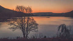 M O R N I N G (Ian Emerson) Tags: morning sunrise ladybower reservoir glow orange magenta pink hills peakdistrict derbyshire tree winter january 2018 outdoor landscape england canon water reflection colourful colours