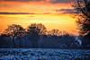 sunrise-in-Appel (Don Pedro de Carrion de los Condes !) Tags: donpedro d700 dutch sneeuw sunrise zonsopgang apple nijkerk buurtschap winters vroeg sfeer vanouds bomen veld silhouetten rook boerderij farm kachel houtgestookt schoorsteen pluim rookpluim winter koud veluwe