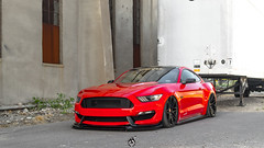 Ford Mustang | VRC13
