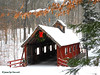 Loon Song Covered Bridge (JamesEyeViewPhotography) Tags: loon song covered bridge winter snow trees leaves michgian northernmichigan nature landscape jameseyeviewphotography