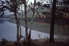 New England Lake in Autumn - Kodachrome (1) (Ron of the Desert) Tags: film slidefilm positivefilm reversalfilm kodak kodachrome newengland autumn trees lake