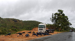 Military exercise (LeftCoastKenny) Tags: madagascar day16 route2 road trees hills men truck clouds
