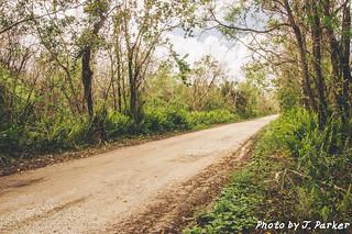 Jane's Scenic Drive
