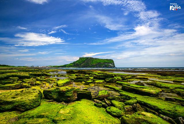 済州島の体験:済州島世界遺産めぐり1日