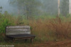 Bench in the Mist - HBM (11Jewels) Tags: canon 70300 bench oldmiakkapreserve mist sarasotafl benchmonday