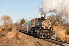 NH&I 40 @ Lahaska, PA (Dan A. Davis) Tags: newhopeivyland steamlocomotive newhope newhopeandivylandrailroad nhi nhi40 280 buckscounty lahaska pa pennsylvania passengertrain railroad locomotive