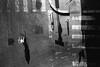Puglia 2017 (Isaia Capobianchi   LookingOver) Tags: rollei rpx400 puglia streetview blackwhite film street nikon f100 analogic