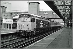 50046, Woking (Jason 87030) Tags: welcome woking surrey 1991 film scan frame biorder hoover 50036 largelogo networksoutheast station platform dull waterloo exeter camera class50 arrowofindecision shelter canopy history past train uk railway locomotibe bw bbw blackandwhite processing railways