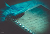 Le chanson des vieux amants (babs van beieren) Tags: poetry song jacquesbrel ribbon paper closeup stilllife writing letter blue 7dwf wednesday macroorcloseup