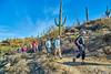 2018-01-30 09.37.59 (Standroid43) Tags: ilce7rm2 omzuiko21mmf35 garwoodtrail threetankstrail douglasspringstrail carrillotrail saguaronationalpark tucson az hiking steeltank