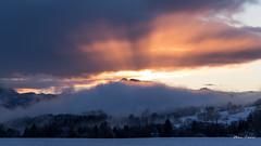 Fin de journée neigeuse en Chablais (MarKus Fotos) Tags: alpes alps chablais canon evian france f4 forêt gavot hautesavoie hiver fevrier bernex winter neige snow ngc brume paysage coucher de soleil