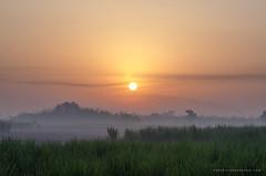 Good Morning (Ibrahim Nagi) Tags: mist morning goodmorning sunrise beautiful nature landscape landscapephotographer landscapephotography mistymorning love nikonasia ibrahimnagi ibrahimnagiphotography