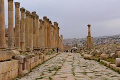 Jerash, Jordan, January 2018 259 (tango-) Tags: giordania jordan middleeast mediooriente الأردن jordanien 約旦 ヨルダン jerash
