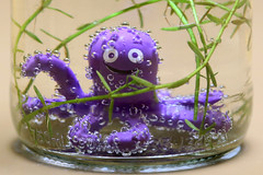bubbling octopussy says hi ! (HansHolt) Tags: bottle fles octopus octopussy bubbling figure toy bubbles luchtbellen waterplant softdrink frisdrank tabletop dof macro canon 6d 100mm canoneos6d canonef100mmf28macrousm macromondays inabottle hmm