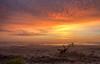 Melbourne Beach Sunrise (dubrick321) Tags: florida beach landscape sunrise brevardcountyfl ocean oceanview