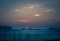 Kanaalpark 3323 (Ingeborg Ruyken) Tags: ochtend morning zonsopkomst februari empel winter 500pxs dropbox morgen empelsedijk dawn february natuurfotografie kanaalpark flickr sunrise