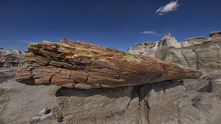 The Real McCoy in the Bisti Wilderness