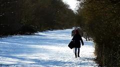 P1080025 Nature temps de neige 76 (personne) -Corra (jeanchristophelenglet) Tags: saintgermainenlayefranceétangducorraforêtdesaintgermainenlaye arbreforêt foresttree florestaarvore neige snow neve