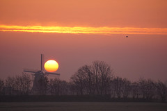 match ball (Wöwwesch) Tags: sunrise windmill colors trees fog winter february dutch holland netherlands icy cold