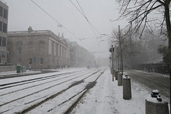 IMG_1754 (lusciousblopster) Tags: snow snowing sneachta white dublin ireland irish snowy winter blizzard flurry storm emma beast from east weather ice icy flake snowflake snowfall whiteout city urban buildings cityscape landscape beastfromeast stormemma eire eireann erin aimsir stephens green stephen's