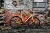 (andyeclov) Tags: fixed gear track bike phil wood thomson carbon sugino