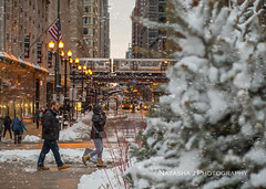 Happy 180th Birthday dear Chicago! to the Awesome city in the world! We LOVE you!!! (Natasha J Photography) Tags: happy 180th birthday dear chicago awesome city world we love you train snow street people