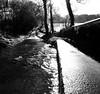 Winter road in flood (Hammerhead27) Tags: shine steep tree bw blackandwhite monochrome sun countryside rural hill bridge devon culm river water flooding flood road winter