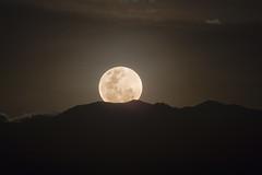 Salida de la Súper Luna 1 (José M. Arboleda) Tags: astronomía bluemoon salida super luna cielo noche montaña horizonte popayán colombia canon eos 5d markiv tamron sp150600mmf563divcusda011 josémarboledac