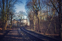 Lost Railway (Christian Passi - Steher82) Tags: railway lost wald forest tree germany photo photography schatten shadow light licht natur natura nature wood schiene view sony sonya6000 a6000 2018 kurve curve baum 24mm trist winter