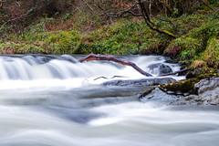 silky stream (lufcwls) Tags: canon eos 500d rebel t1 wales cymru uk europe countryside longexposure river waterfall water tree branch silky