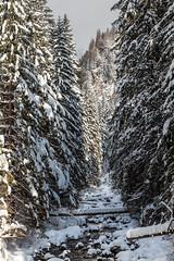 Winter Tatra Mountains (Kajfash) Tags: canoneos5dmarkii canonef24105mmf4lisusm poland polska dolinakościeliska tatry tatryzachodnie westerntatra tatramountains landscape krajobraz winter zima nature natura